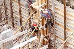budowa1